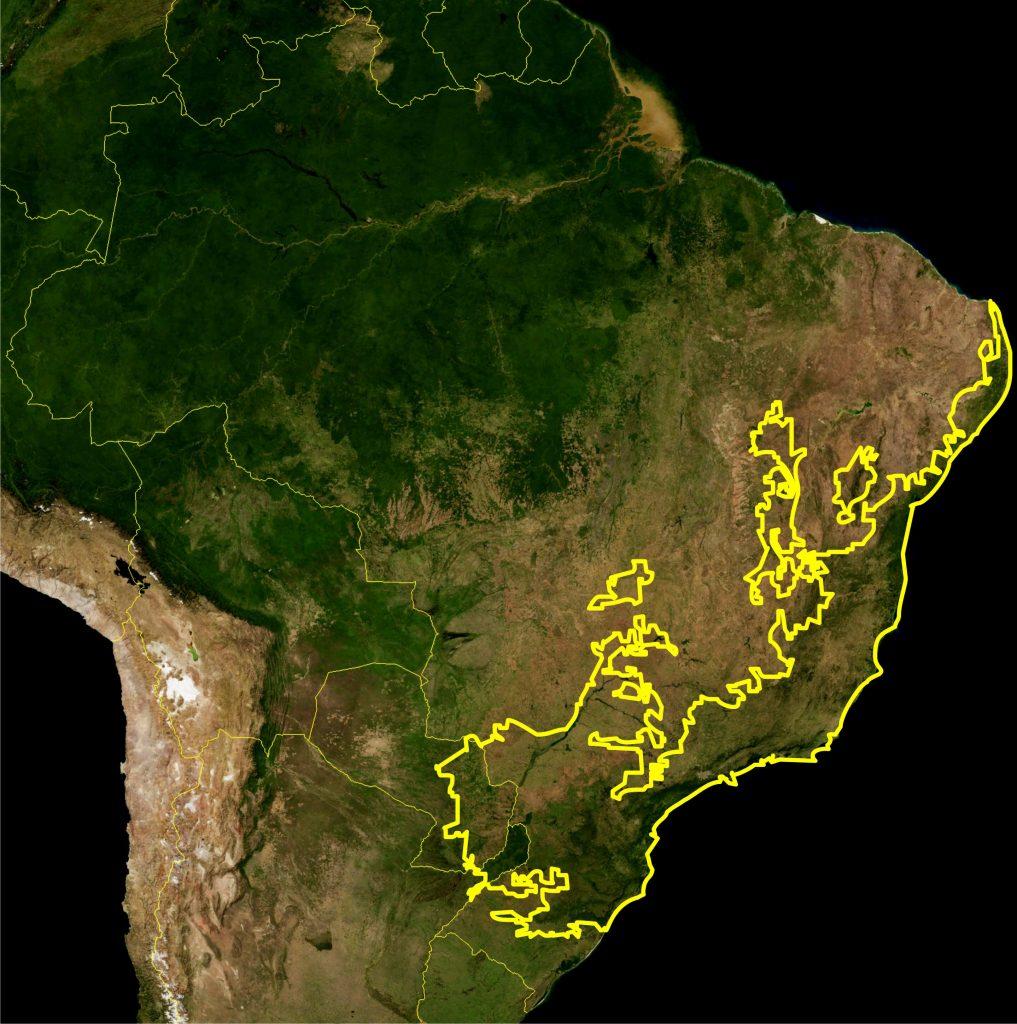 Mapa de Brasil bosque atlántico